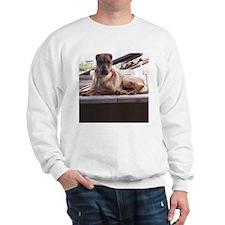 Shar-Pei Sweatshirt 7