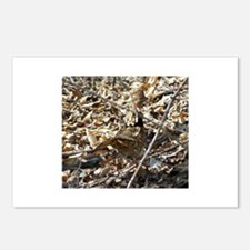 Camoflaged Ruffed Grouse Postcards (Package of 8)