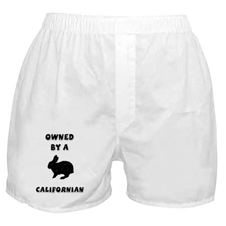 Owned by a Californian Boxer Shorts