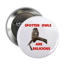 """SPOTTED OWLS 2.25"""" Button"""