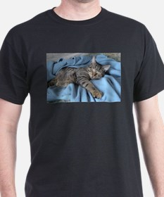 Cute Kitty 15 T-Shirt