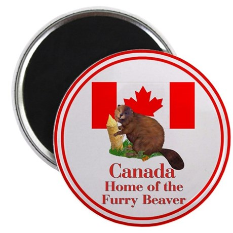 "Canada - Beaver Home 2.25"" Magnet (10 pack)"