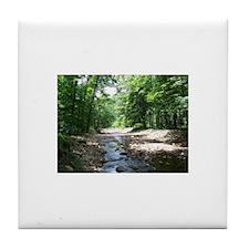 Babbling Brook Tile Coaster