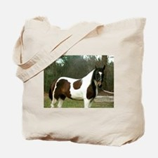 Paint Horse Photograph Tote Bag