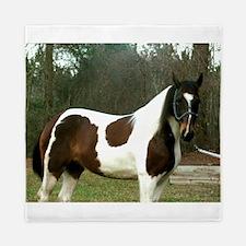 Paint Horse Photograph Queen Duvet