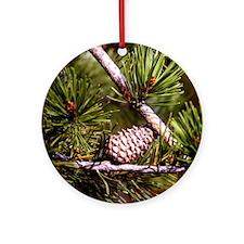 Pine Cone Ornament (Round)
