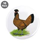 Gold Brabanter Hen 3.5