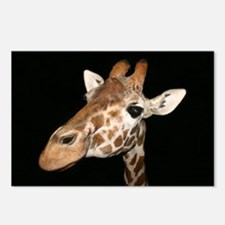 Beautiful Giraffe Postcards (Package of 8)
