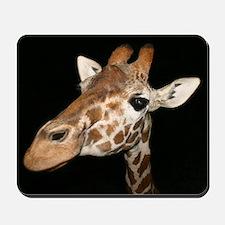 Beautiful Giraffe Mousepad