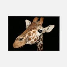 Beautiful Giraffe Rectangle Magnet