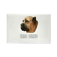 Cane Corso Rectangle Magnet (10 pack)