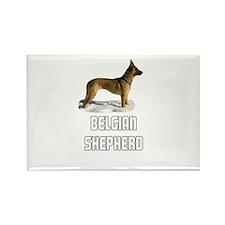 Belgian Shepherd Rectangle Magnet (10 pack)