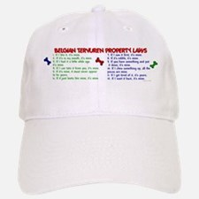 Belgian Tervuren Property Laws 2 Baseball Baseball Cap
