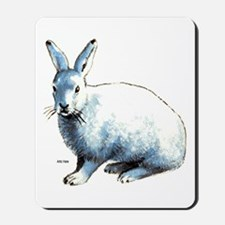 Artic Hare Mousepad