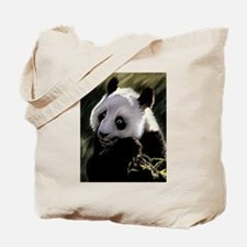 Panda Bear Tote Bag