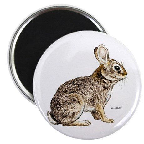"Cottontail Rabbit 2.25"" Magnet (10 pack)"