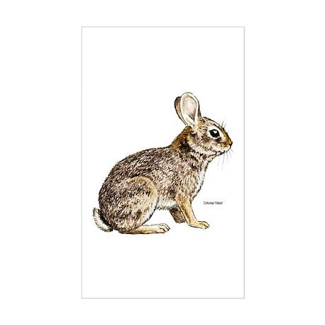 Cottontail Rabbit Rectangle Sticker