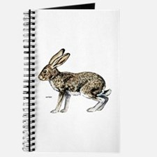 Jack Rabbit Journal