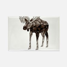 Geometric Moose Magnets