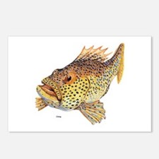 Coney Tropical Fish Postcards (Package of 8)