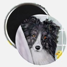Bi Black Sheltie Bath Magnet