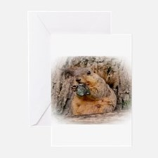 Snappy Greeting Cards (Pk of 20)