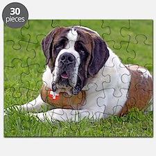 Saint Bernard Dog2 Puzzle