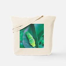 Vegeterian Tote Bag