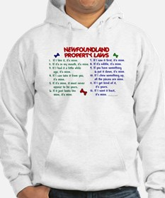 Newfoundland Property Laws 2 Jumper Hoody