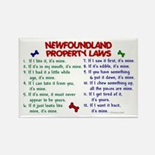 Newfoundland Property Laws 2 Rectangle Magnet