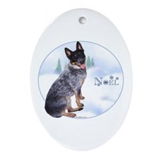 ACD Noel Oval Ornament