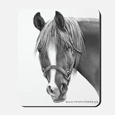 Rosa, Arabian Horse Mousepad