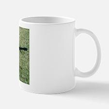 Hidalgo the Galgo Mug