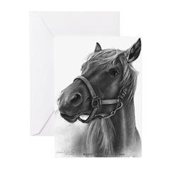 Ranger, Arabian-Tennessee Walking Horse Greeting C