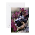 GSD Greeting Cards (Pk of 20)