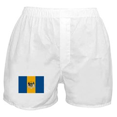 Philadelphia Flag Boxer Shorts