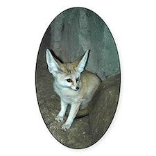 Fennec Fox Oval Decal