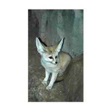 Fennec Fox Rectangle Decal