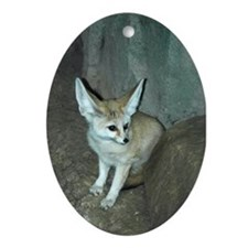 Fennec Fox Oval Ornament