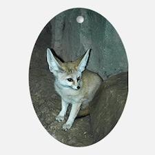 Fennec Fox Oval Ornament