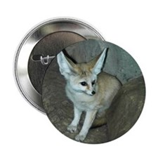 "Fennec Fox 2.25"" Button"
