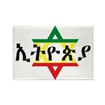 Star of David Rectangle Magnet (100 pack)