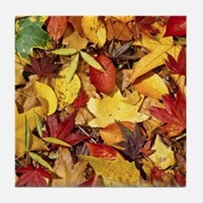 Fall Leaves, Natures Carpet Tile Coaster