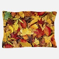 Fall Leaves, Natures Carpet Pillow Case