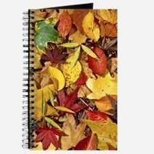 Fall Leaves, Natures Carpet Journal