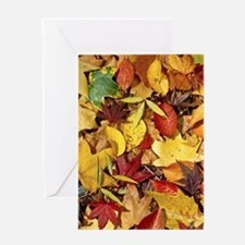 Fall Leaves, Natures Carpet Greeting Cards