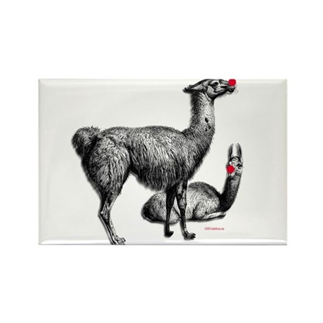 llamas Rectangle Magnet (100 pack)