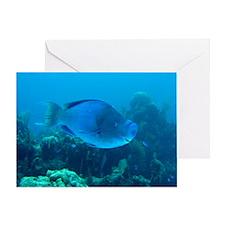 Blue Parrotfish Blank Greeting Card