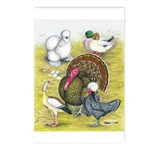 Assorted Poultry #3 Postcards (Package of 8)