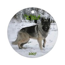 2007 Christmas Ornament (Round)